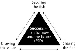 A triangle image showing the Fisheries Victoria vision of success. Success equals fish for now and the future(ESD). At the top of the triangle is 'securing the fish' At the bottom left is 'Growing the value'. At the bottom right is 'Sharing the fish'