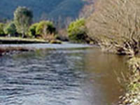 Corryong Creek