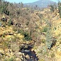 Bundarra River