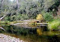 Dandongadale River