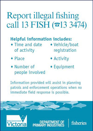 Report illegal fishing call 13 FISH (13 3474). Helpful information includes: Time and date of activity; Place; Number of people involved; vehicle/boat registration details; activity; and equipment. Information provided will assist in planning patrols and enforcement operations when no immediate field response is possible.
