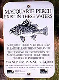 Maquarie Perch penalty