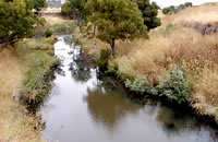 Moorabool River East