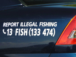 Report illegal fishing - call 13FISH