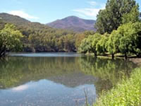Bogong Dam (Lake Guy)
