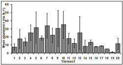 """""""This graph shows the Mean SE abundance at each transect across sampling period. Transect 1: ~07, Transect 2: ~16, Transect 3: ~15, Transect 4; ~25, Transect 5: ~32, Transect 6: ~20, Transect 7: ~35, Transect 8: ~24, Transect 9: ~30, Transect 10: ~33, Transect 11: 15, Transect 12: ~11, Transect 14: ~8, Transect 15: ~15, Transect 16: ~8, Transect 17: ~9, Transect 18: ~6, Transect 19: ~4, Transect 20: ~11"""""""