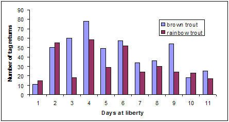 Graph: Figure 1 Frequency count of daily tag returns for the first 11 days after release
