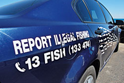 Report Illegal Fishing