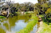 Loddon River South