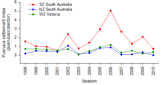 Figure 6: Puerulus settlement index in the Southern (SZ) and Northern Zone (NZ) of South Australia and the WZRLF from 1998-2010.
