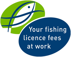 Your licence fees at work