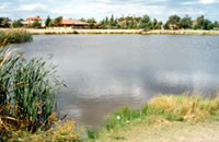 One of the Roxburgh Park Lakes