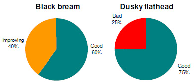 Angler perceptions of the status of black bream and dusky flathead stocks in Mallacoota Inlet.