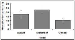 """This graph shows the mean SE abundance during each sampling period within Venus Bay. August - 18, September - 23, October - 10"""