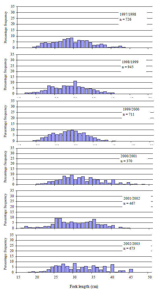 Graph: Figure 19. Size composition of all King George whiting caught (both retained and released) by anglers contributing to the Fishing Diary Program who fished in Port Phillip Bay from 1997 to 2003 (n=number of fish measured).