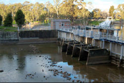 Within old surface release building on Goulburn Weir