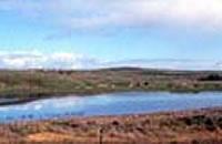 Lake Gillear