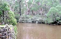 Crawford River