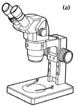 microscope a