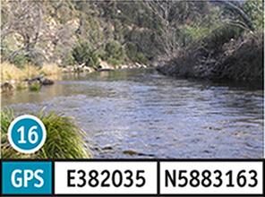 Brooks River Reserve
