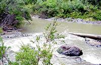 Tyers River