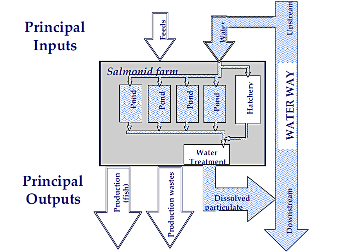 Flowchart: Schematic of a flow- through salmonid farm, shows Principle Inputs -Feeds, Water and Principal Outputs - Production(Fish), Production Wastes, Dissolved Particulate