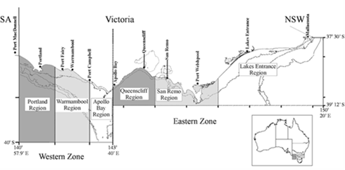Figure 1: Victorian Rock Lobster Fishery management zones