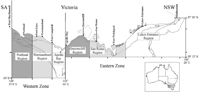 A diagram illistrating the rock lobster fishery management zones and assessment regions.