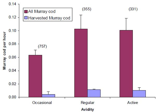 Figure 2. Mean (±SE) catch rates and harvest rates for Murray cod by anglers who self assessed their participation in the fishery as 'occasional', less than once per month;'regular', at least once per month, or 'active', at least once per week. No significant differences among groups. Sample sizes are in parentheses
