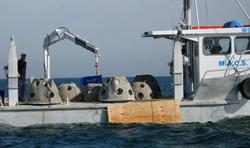 depolying reef balls in prto phillip bay