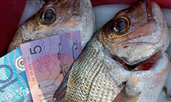 Fish and a five and ten dollar note