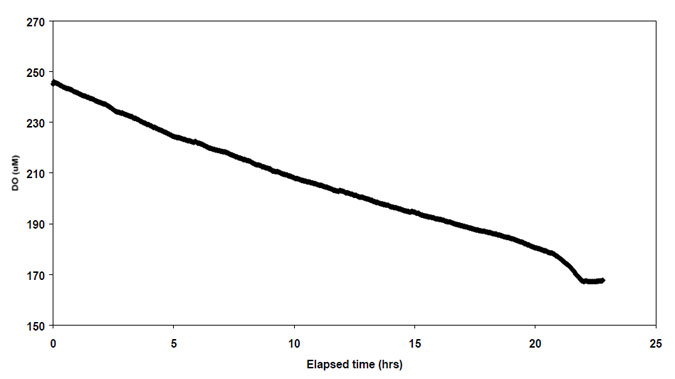 Figure 5.2. Change in dissolved oxygen concentration with time during incubation at site 26.