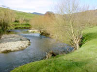 Tallangatta Creek