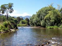 Kiewa River below Mt Beauty