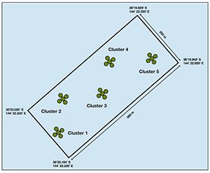 Tourquay Reef Modules Map