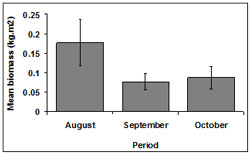 """This graph shows the mean SE biomass during sampling periods. August: 0.17, September: 0.07, October: 0.08"""